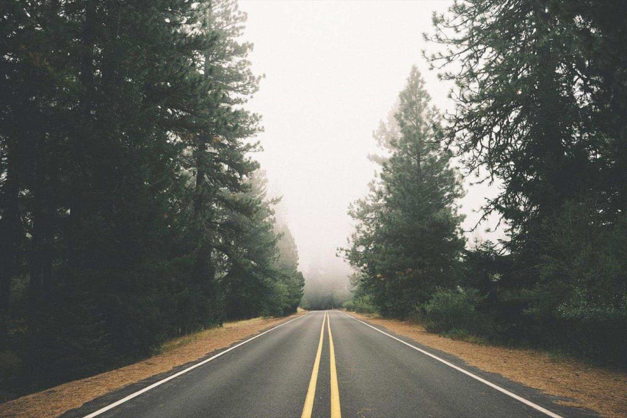 journey-into-the-interior