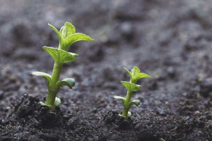 Your Personal Brand Needs a Growth Strategy