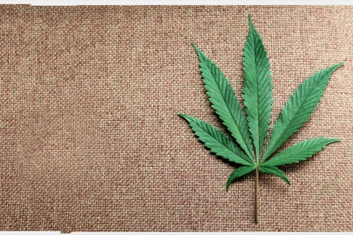 The Little-Mentioned Consequence of Selling Marijuana
