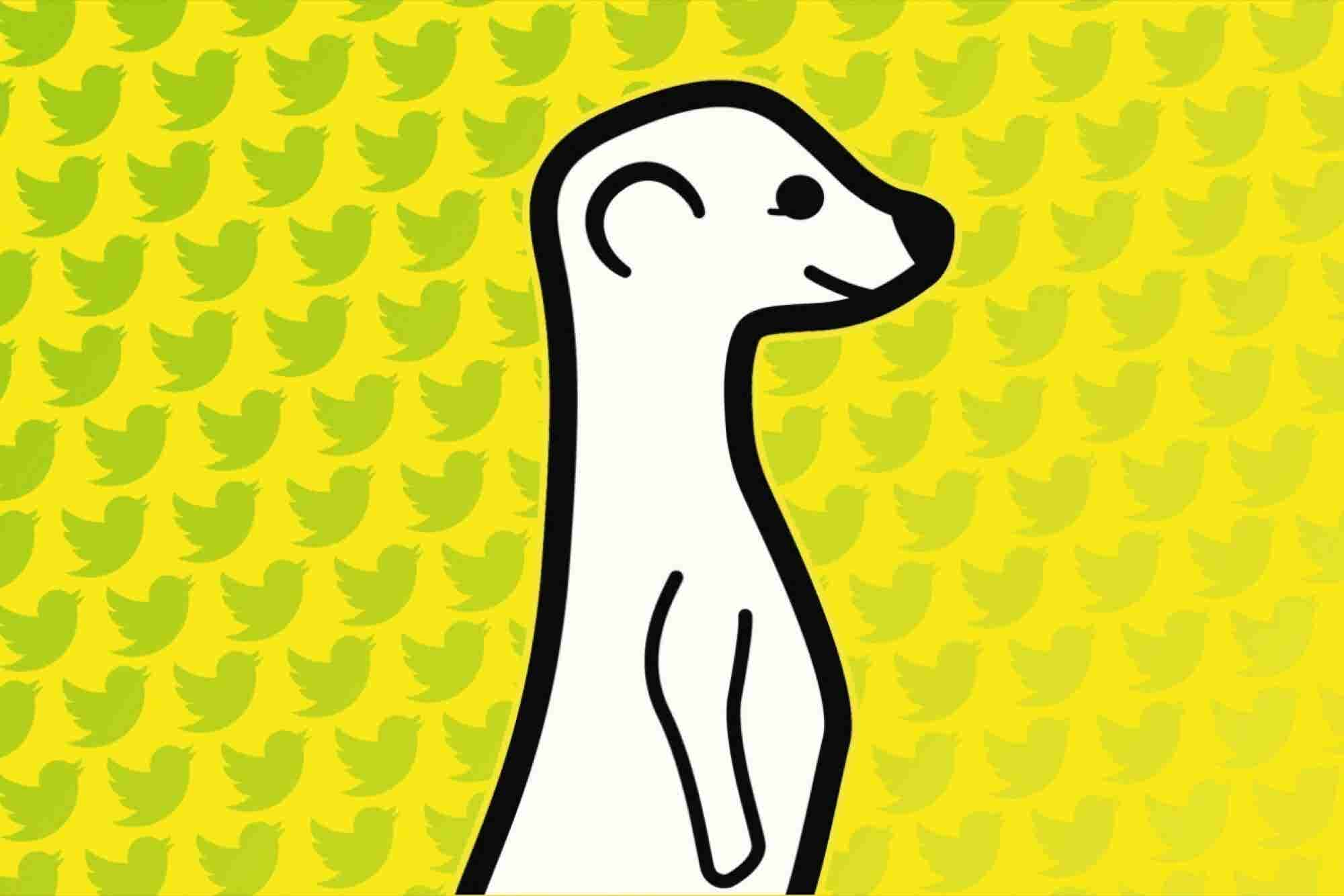 Meerkat CEO on Twitter Blockage: It's Their House, and We Need to Respect That