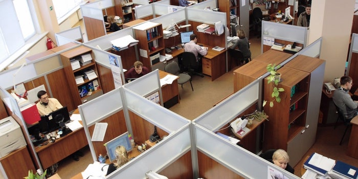 The 4 Steps You Must Take to Deal With a Distracting Cubicle Neighbor Before Asking the Boss for Help