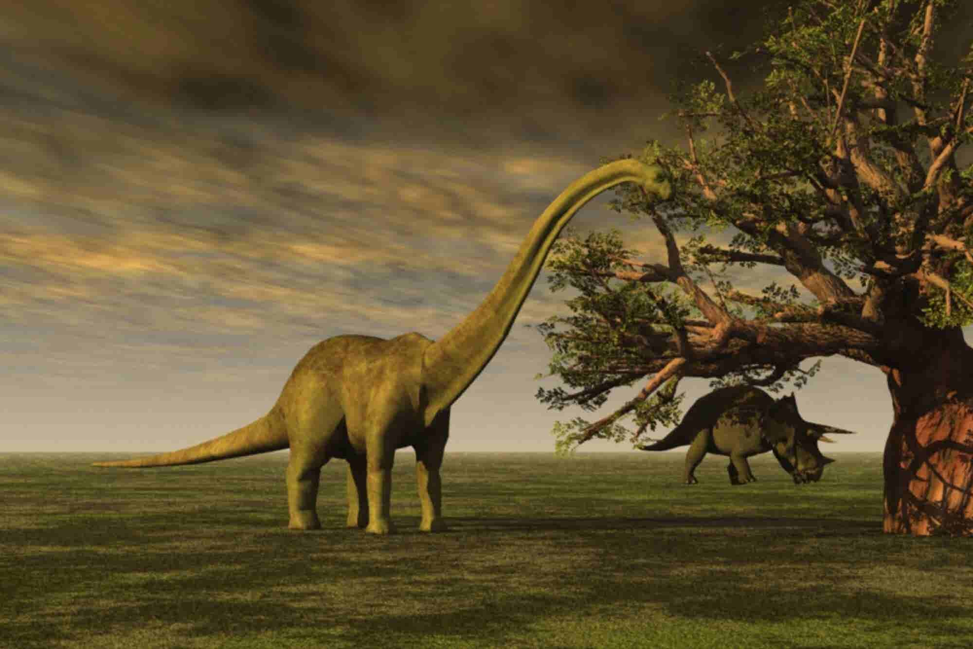Tech Startups Are Prodding the Dinosaur That Is the Insurance Industry