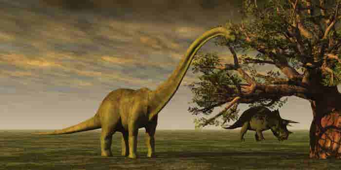 Scientists Say They Can Recreate Living Dinosaurs Within the Next 5 Years