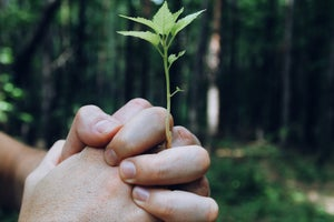 3 Reasons Why Partnerships Need to be Part of Your Growth Strategy