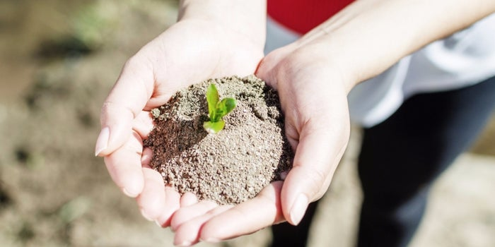 Let's Celebrate Earth Day With Some Green Startups