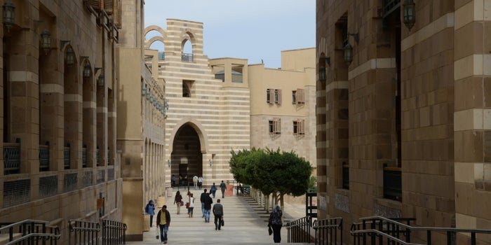 Educating Execs: The American University in Cairo, Egypt