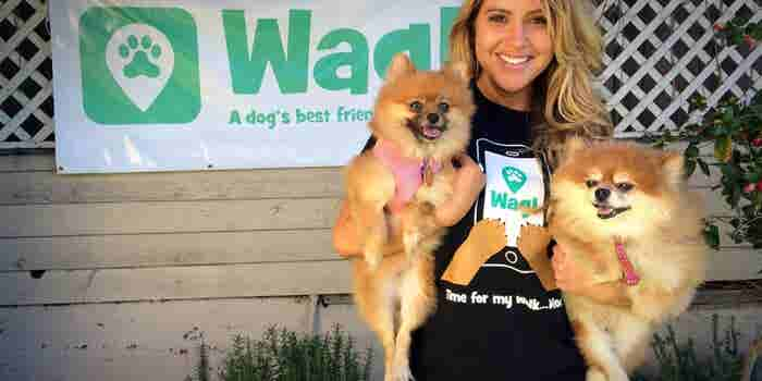 Meet Wag, an App to Help You Find a Dog Walker