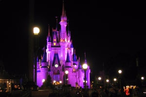 What Disney's VIP Treatment Can Teach You About Email Marketing