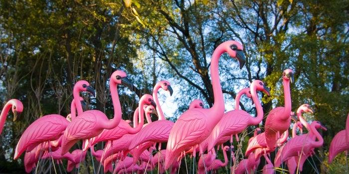 Creator of the Iconic Pink Plastic Flamingo Dies
