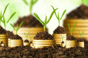 Why Angel-Backed Startups Should Opt For Venture Capital Funds