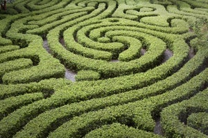 Free Webinar: Maze 2.0 – A Marketing Plan for the the Death of the Web