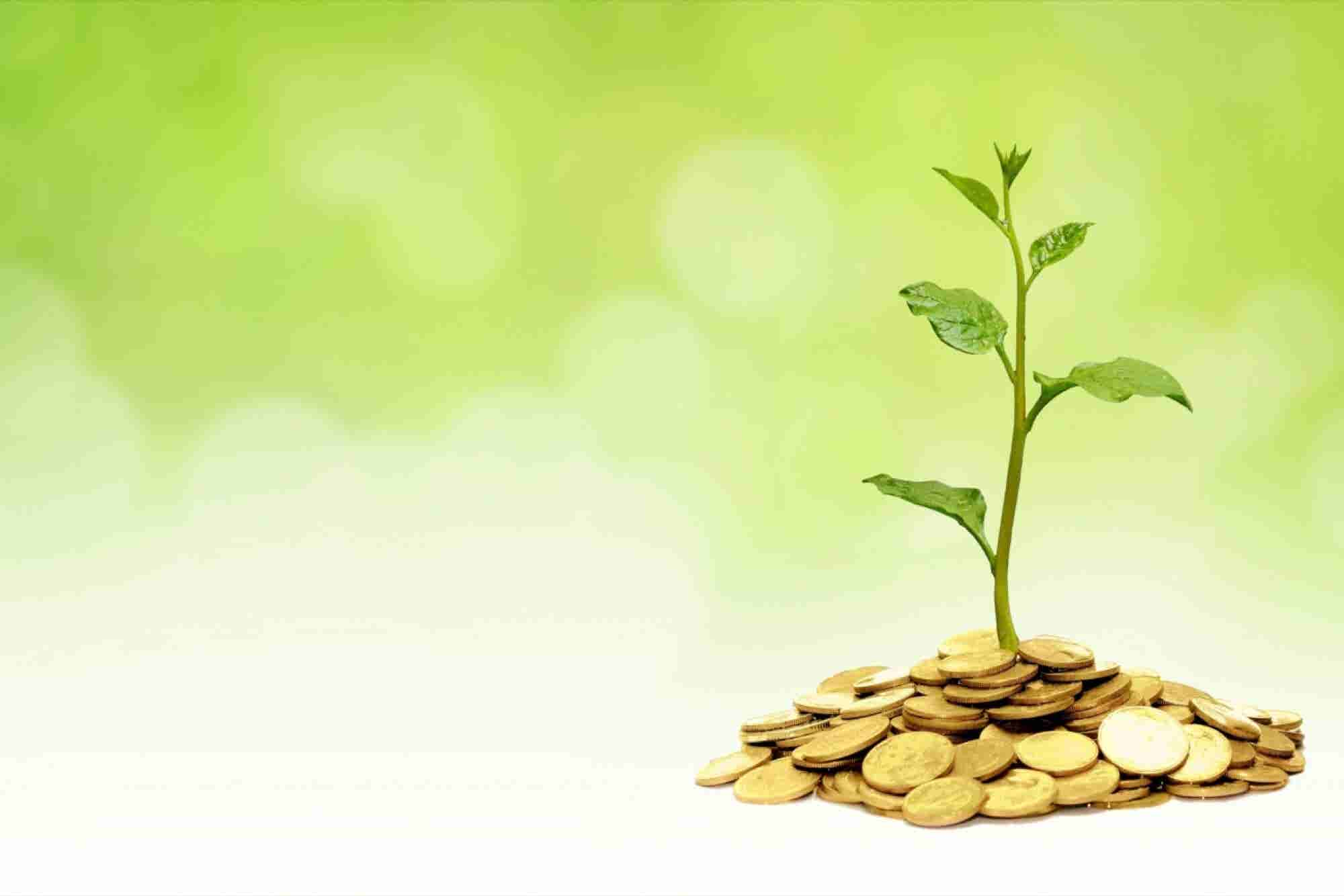 Charity Begins At Home: Startups With CSR At Their Core