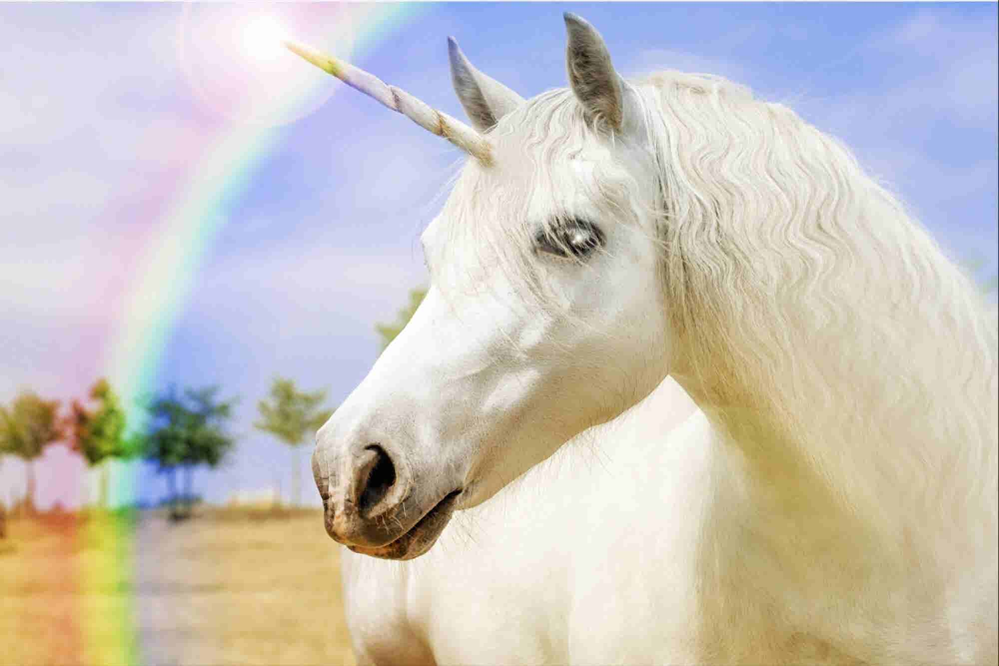 4 Ways to Scale and Capture Your 'Unicorn' Horn