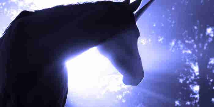 Will Silicon Valley's Unicorn Herd Grow or Shrink in 2016?