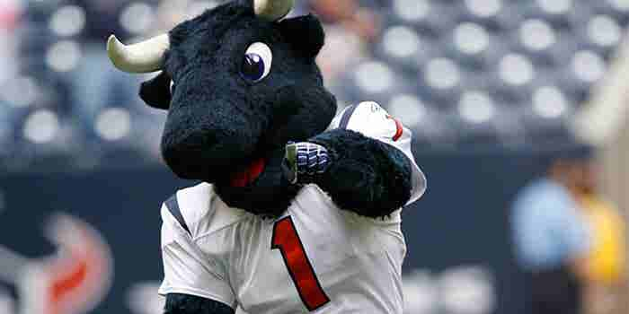 What Being an NFL Mascot Taught Me About Running a Business