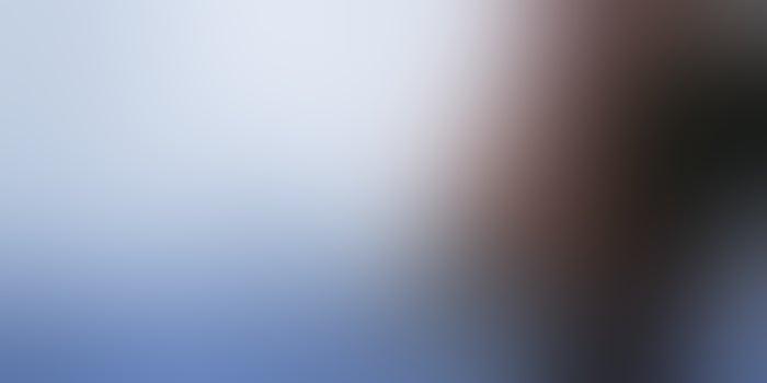 Eternal Sunshine of a Flawless Plan: Winning Startup Strategies