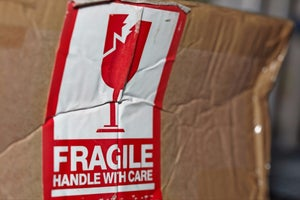 Everything Small Businesses Should Know About Holiday Shipping