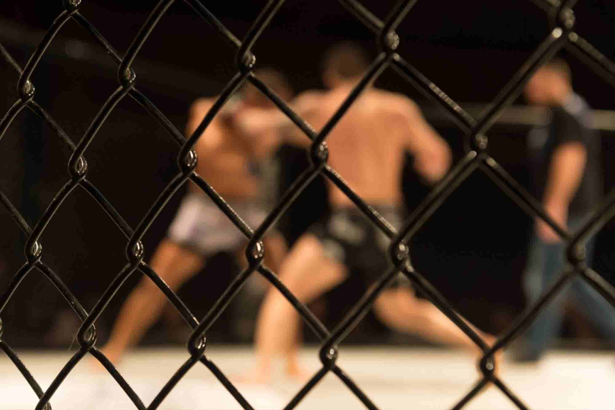 Author Tucker Max Trades Tons of Sex and Booze for Mixed Martial Arts Training