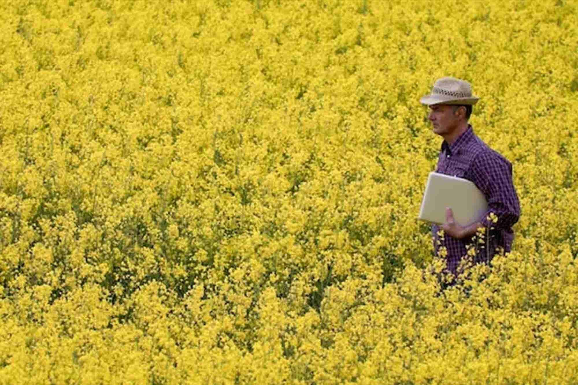How has Technology Sown the Seeds for Advancements in Agriculture