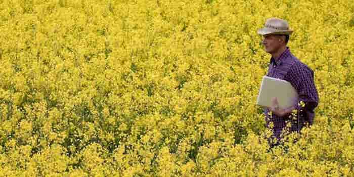 Why Data is Next Big Opportunity in Indian Agriculture