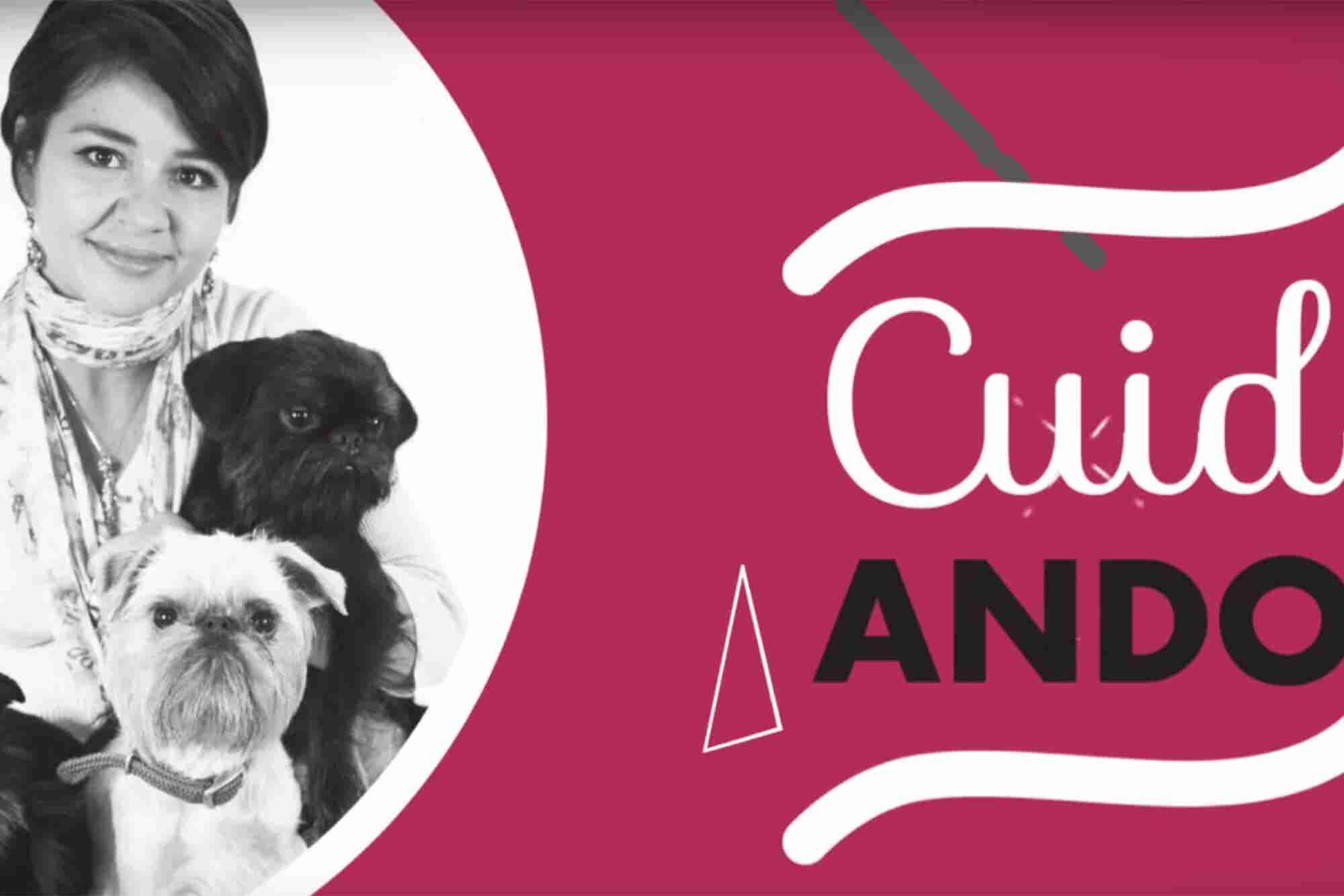Mascotas: conciencia y responsabilidad