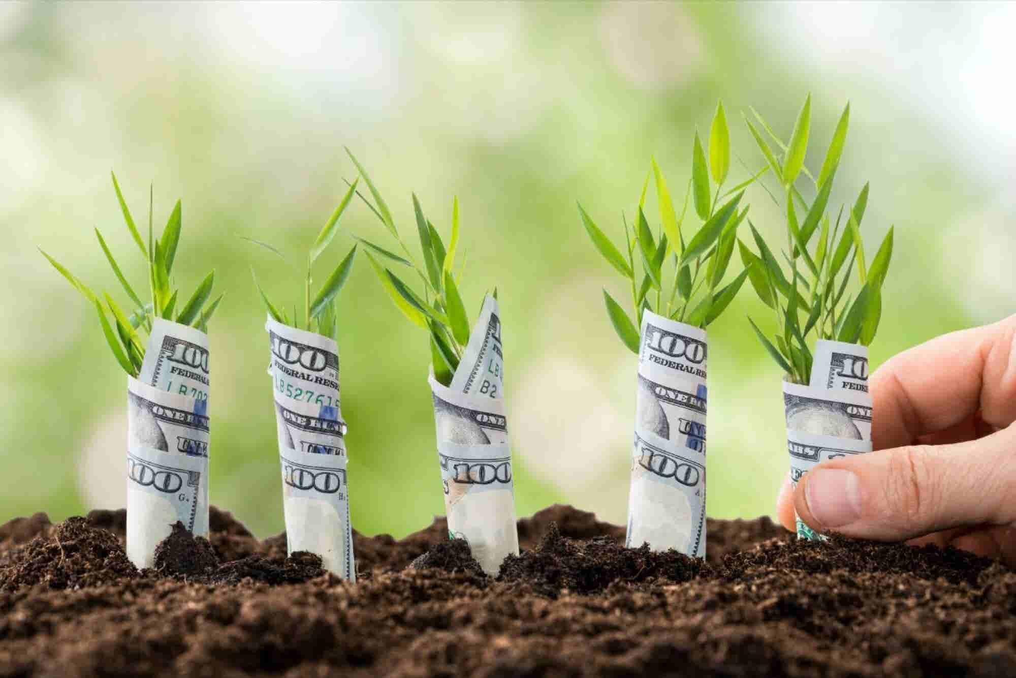 6 maneras de fondear tu negocio