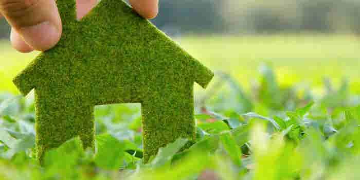Inicia un negocio verde hoy