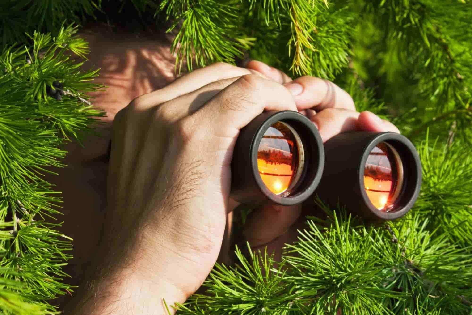 """33 herramientas para """"espiar"""" a tu competencia"""