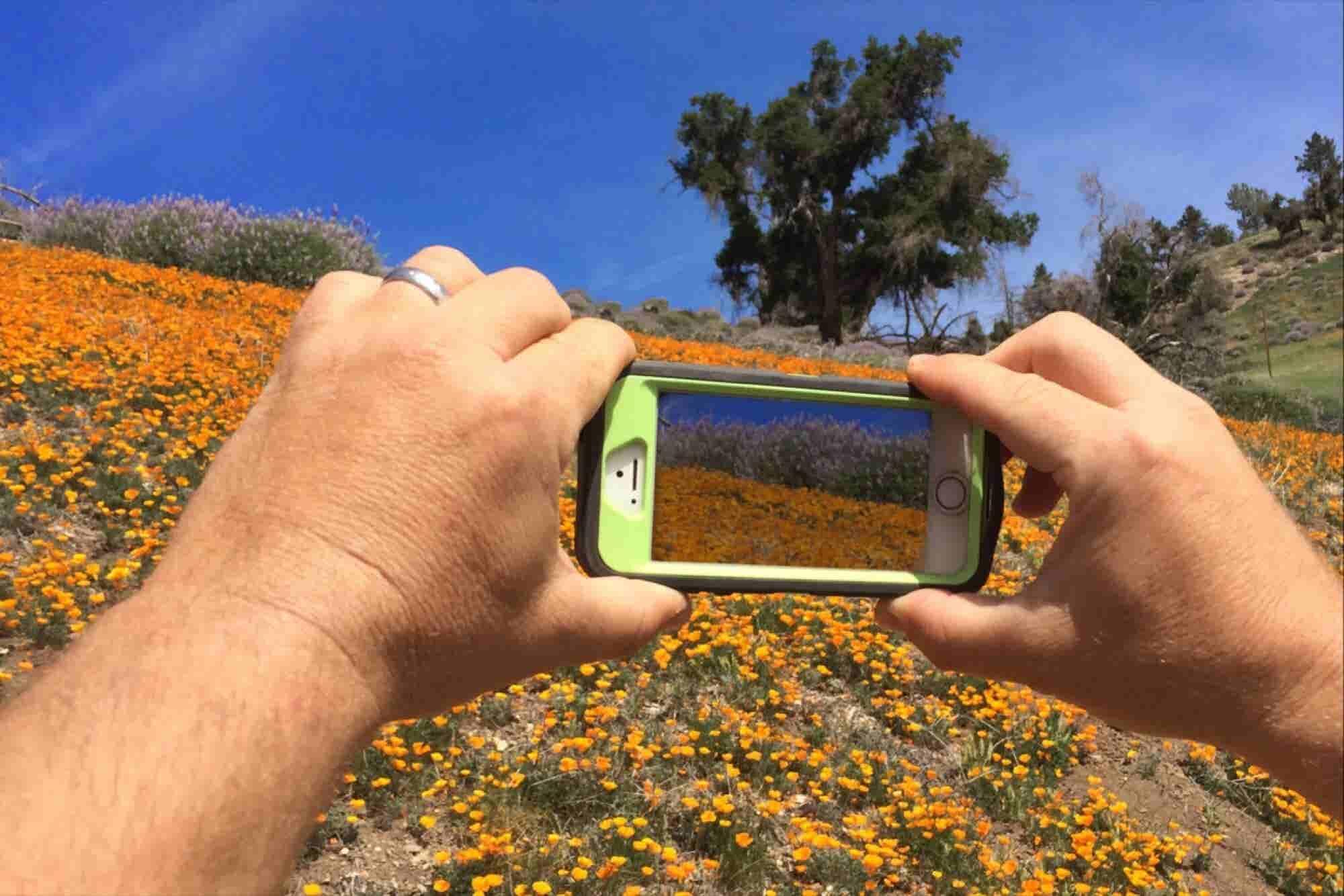 Google Has a New App That Turns Apple Live Photos Into GIFs -- Start U...