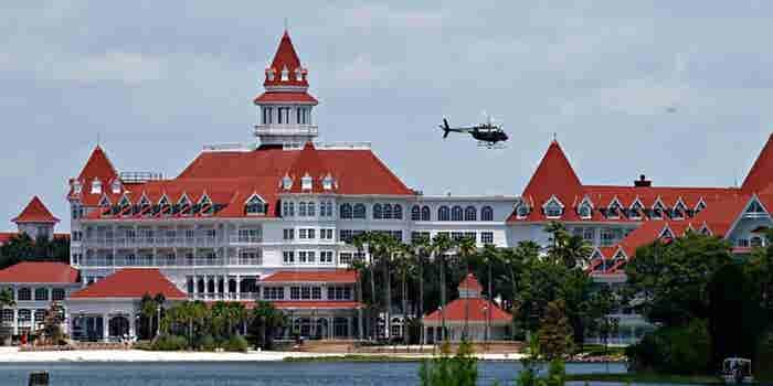 Disney Faces PR Crisis, Risk of Legal Action After Gator Attack