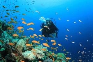 5 Ways Social Media Has Transformed Tourism Marketing