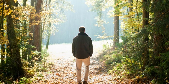 5 razones para acercarte a la naturaleza