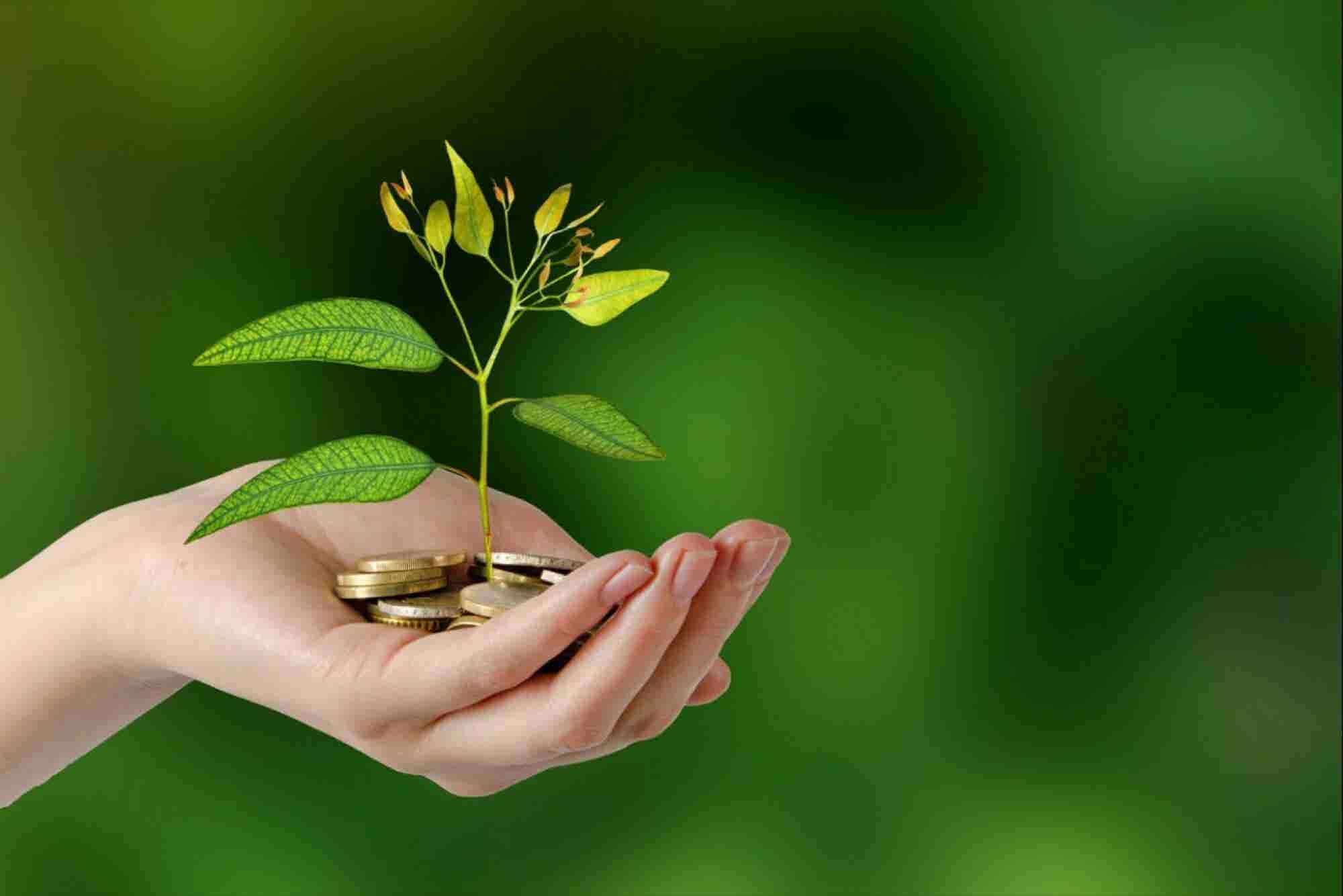 Cómo hacer feliz a tu cliente sin hacer infeliz al planeta