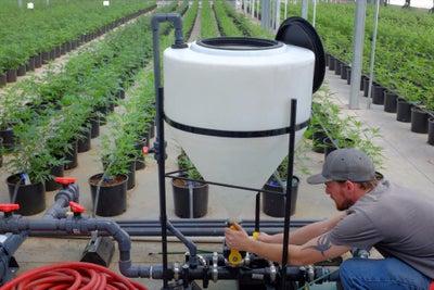 How to Grow a Cannabis Farming Business in the Blazing Marijuana Econo...