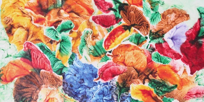 Pintando el cáncer de colores