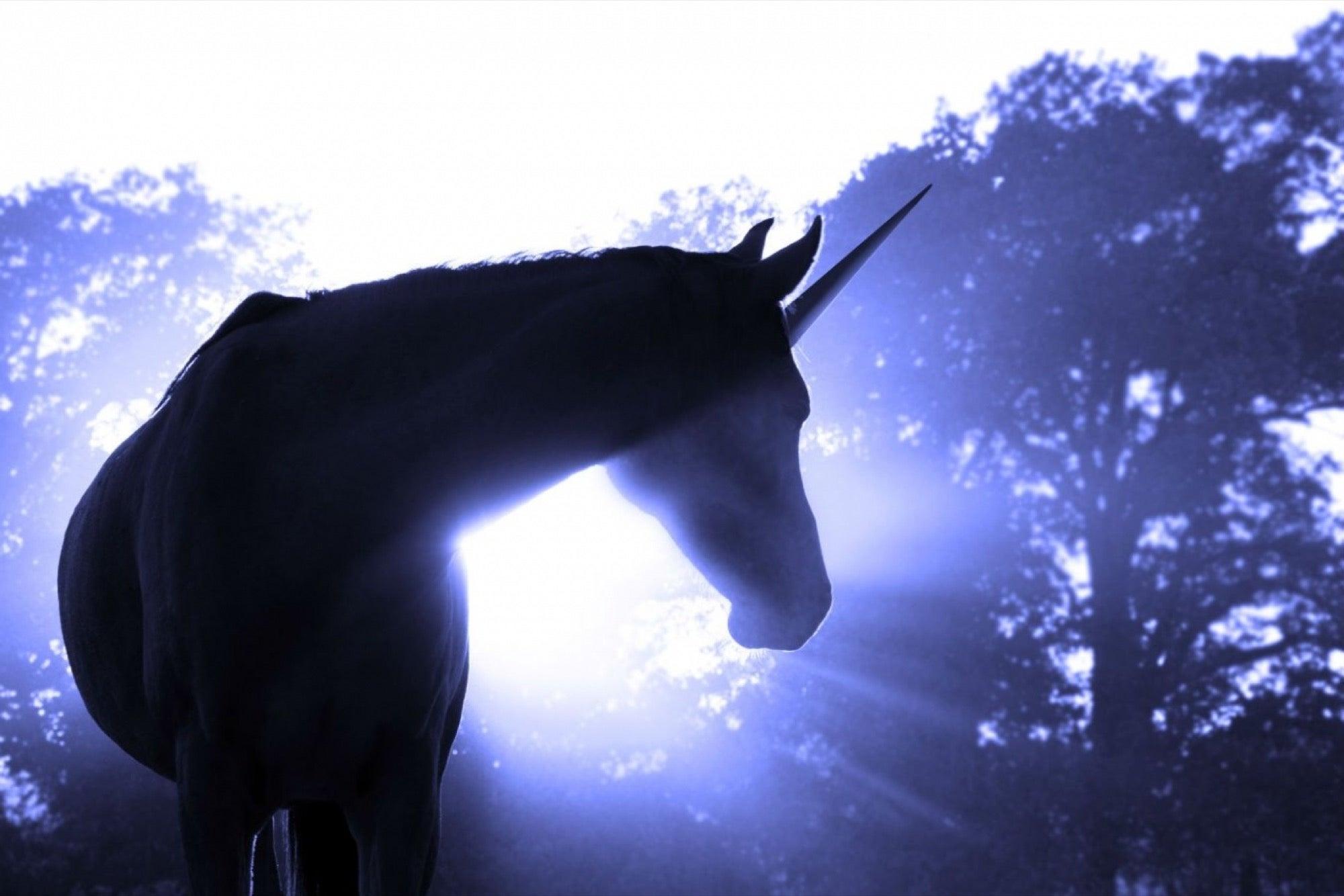 Qué son las compañías unicornio?