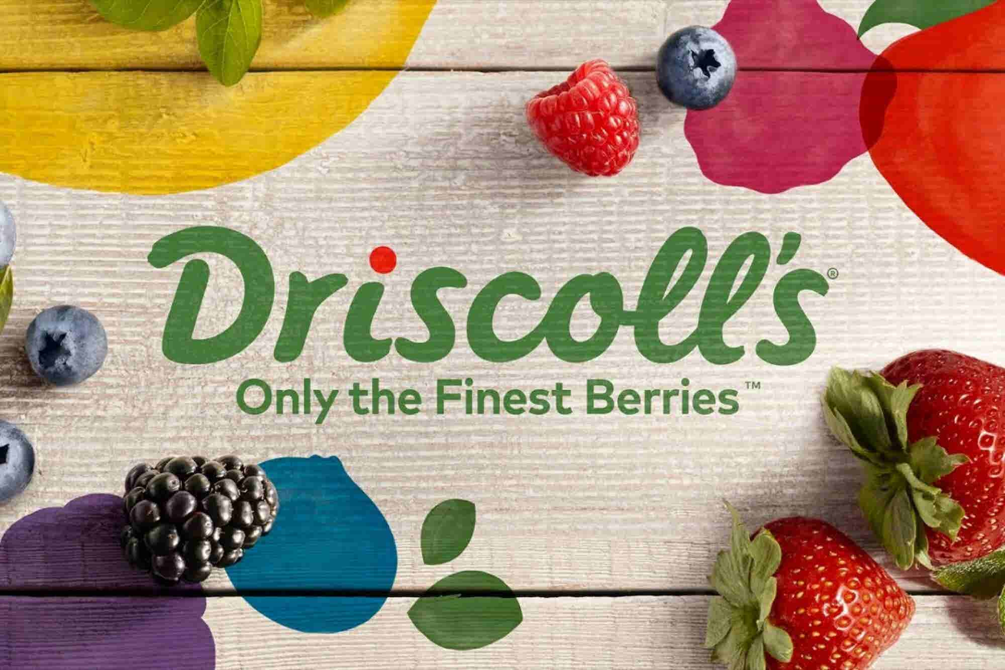 This Once-Per-Century Rebranding Is a Case Study In Marketing Done Right