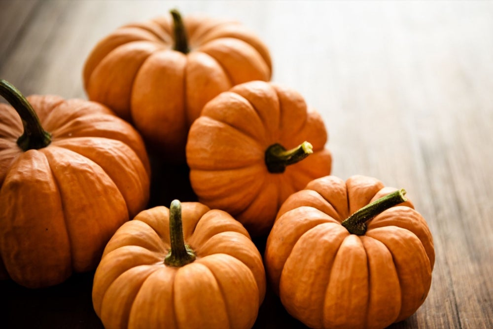 We've Spent More Than $384 Million on Pumpkin Products Already This Year