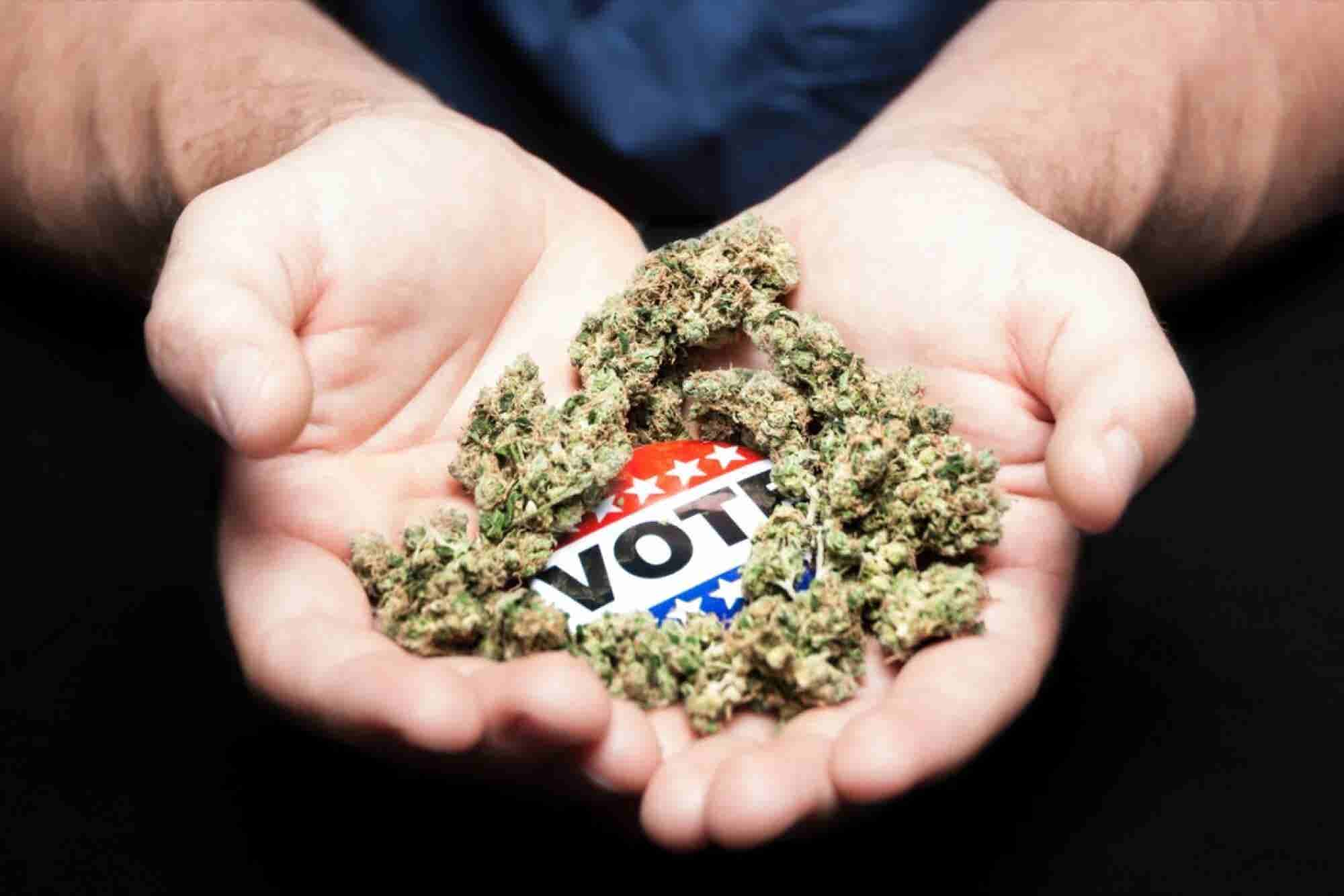 Decision Time: Legal Marijuana Faces Big Moment On Election Night