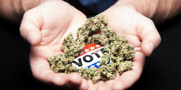 Decision Time: Legal Marijuana Faces Big Moment On Election Night