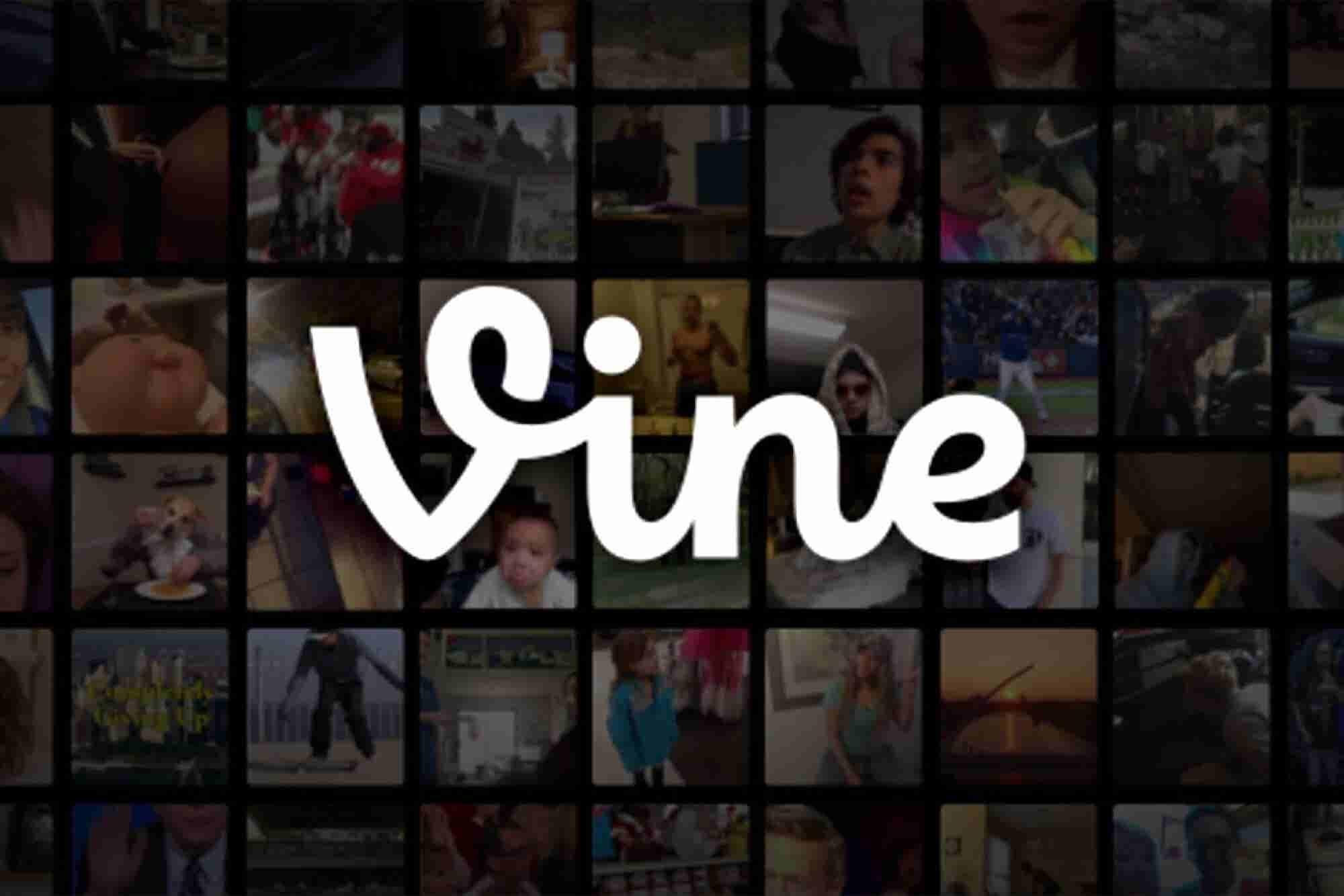 7 Lessons Entrepreneurs Can Learn From Vine's Demise