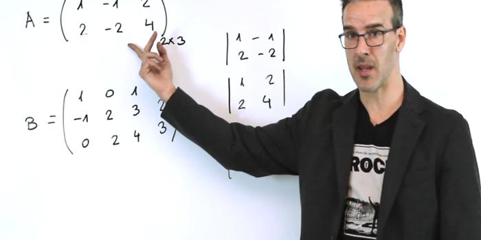 El youtuber que va por Nobel de educación 2016 por sus clases de matemáticas