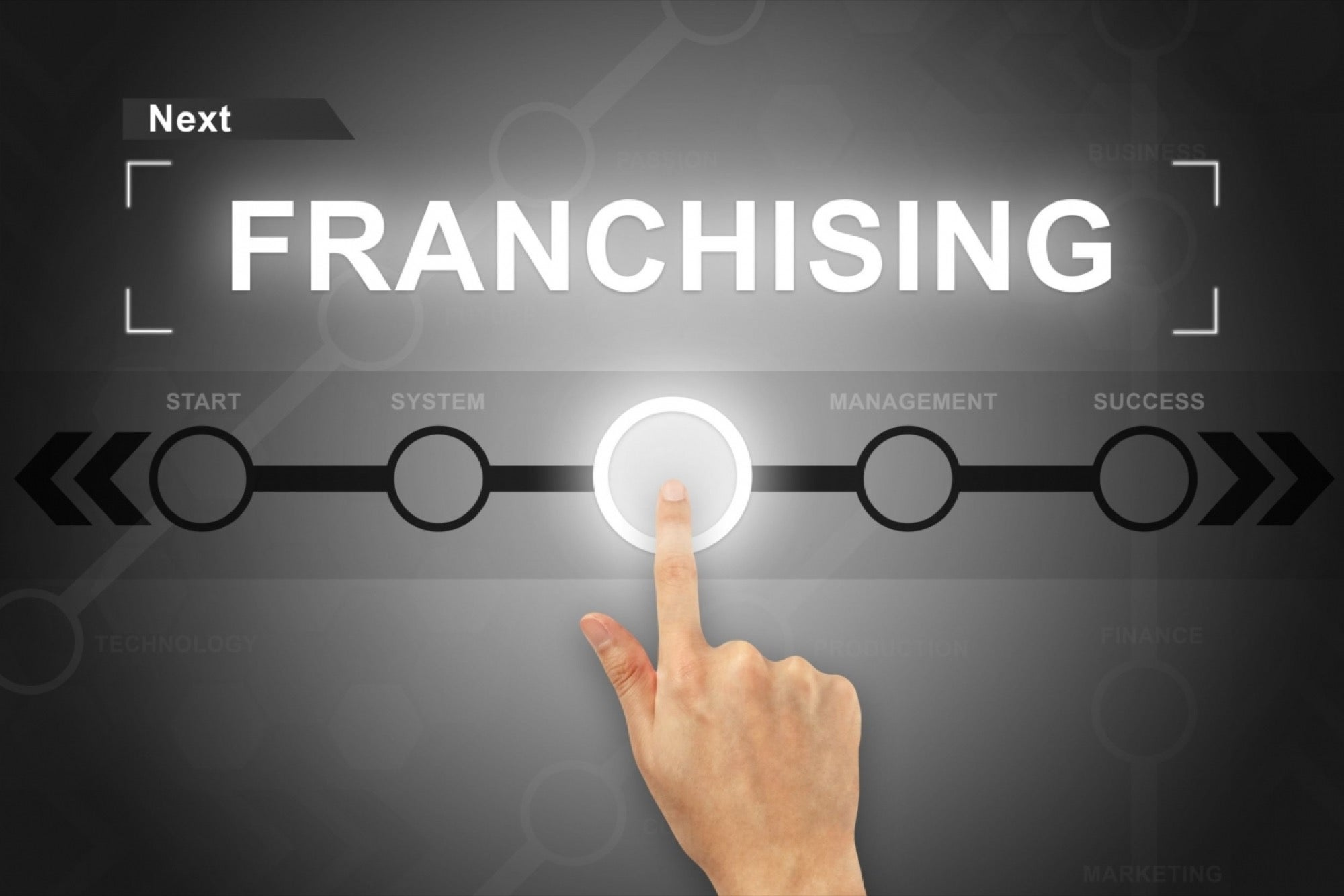 What is a franchise business?