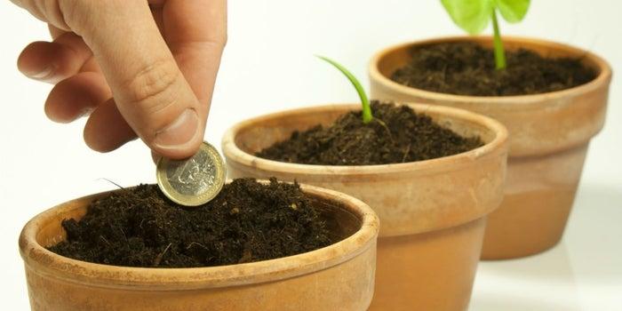 ¿Tu negocio necesita inversión?, 500 Startups te busca