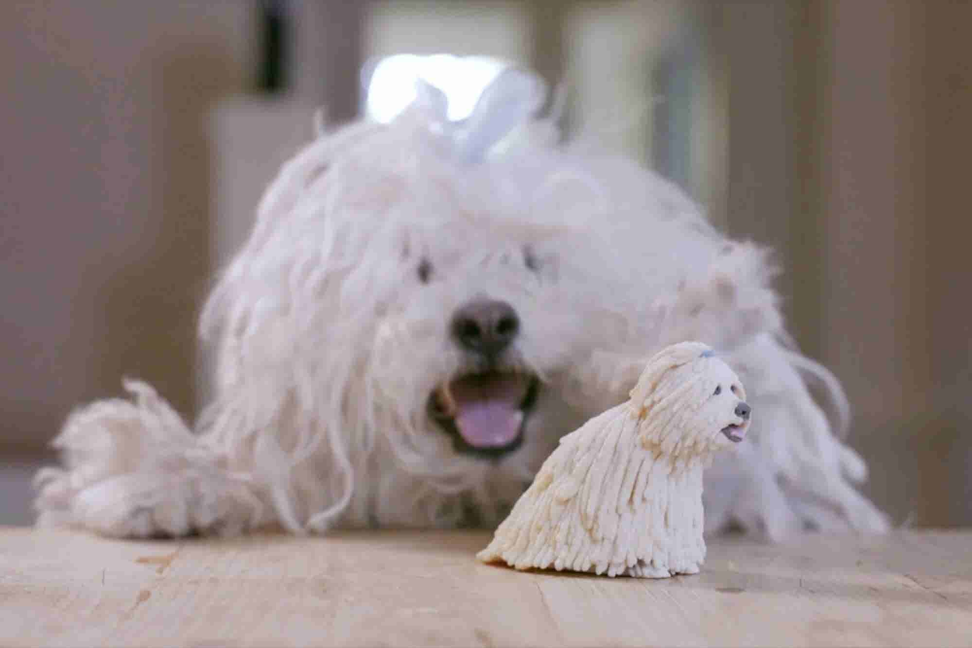 Watch Mark Zuckerberg 3-D-Print a Mini Version of His Dog