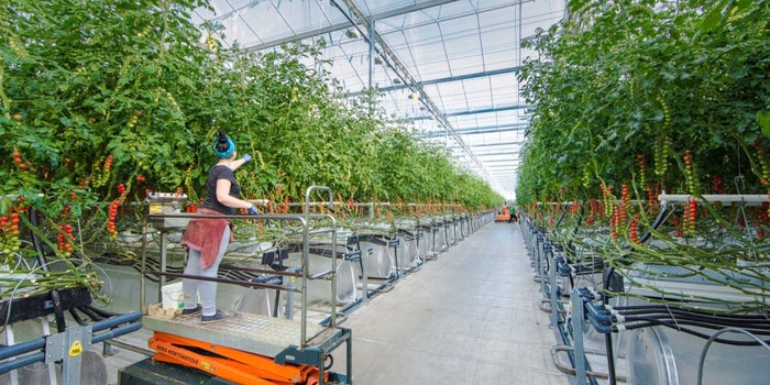 Pure Harvest Aims To Overcome Local Climate Challenges And Make Farming High Tech
