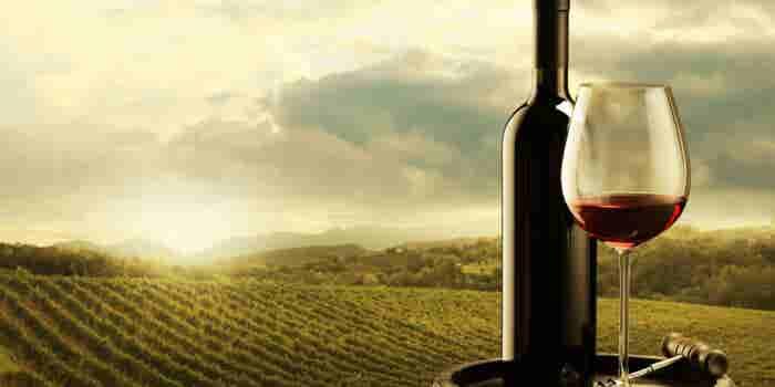 ¡Los eventos imprescindibles para los amantes del vino de 2017!