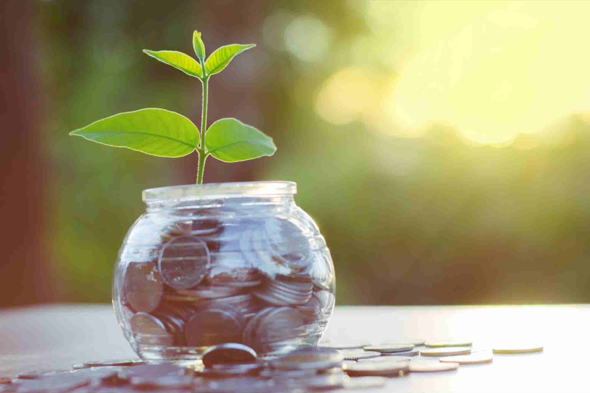 7 fuentes de financiamiento para tu negocio