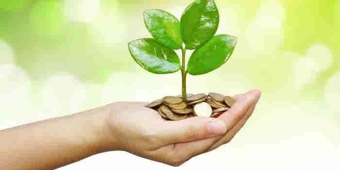 Buscan invertir en negocios de alto impacto