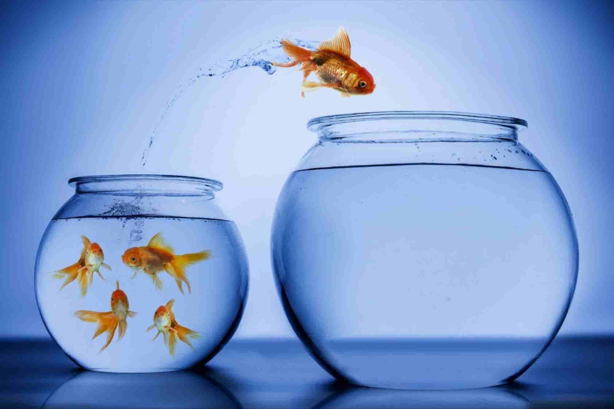 9 razones para cambiar de carrera lo antes posible